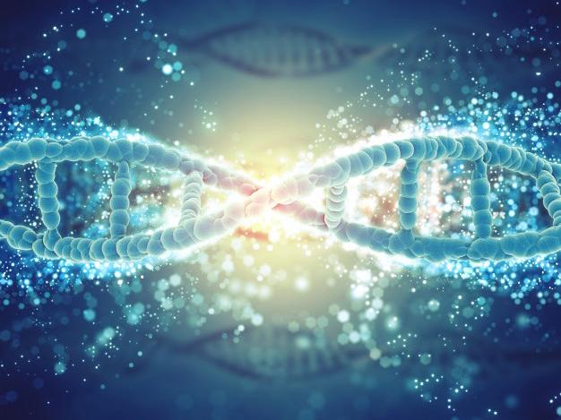 ตรวจยีน หาความสามารถพิเศษ หาโรค